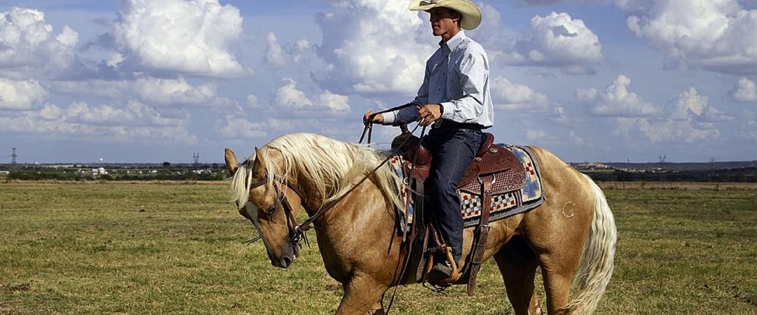 Dica para cowboy  roupas para rodeio  ac247a89078