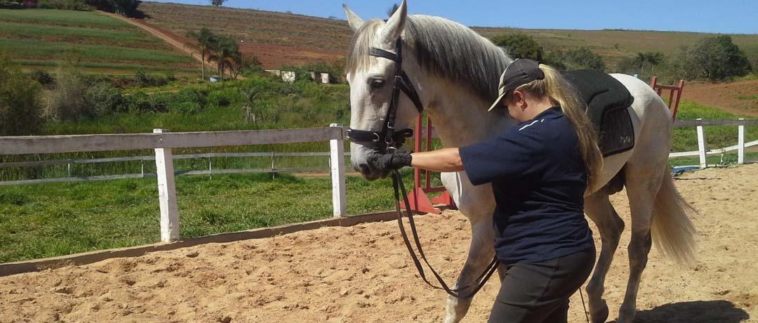 melhorar condicionamento fisico cavalo
