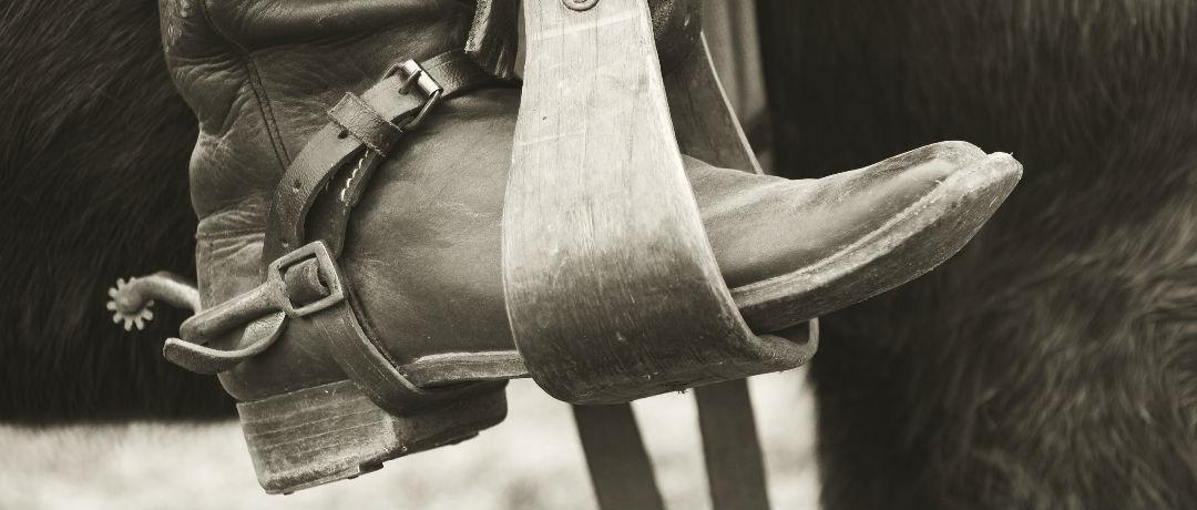 Tipos de esporas para cavalos