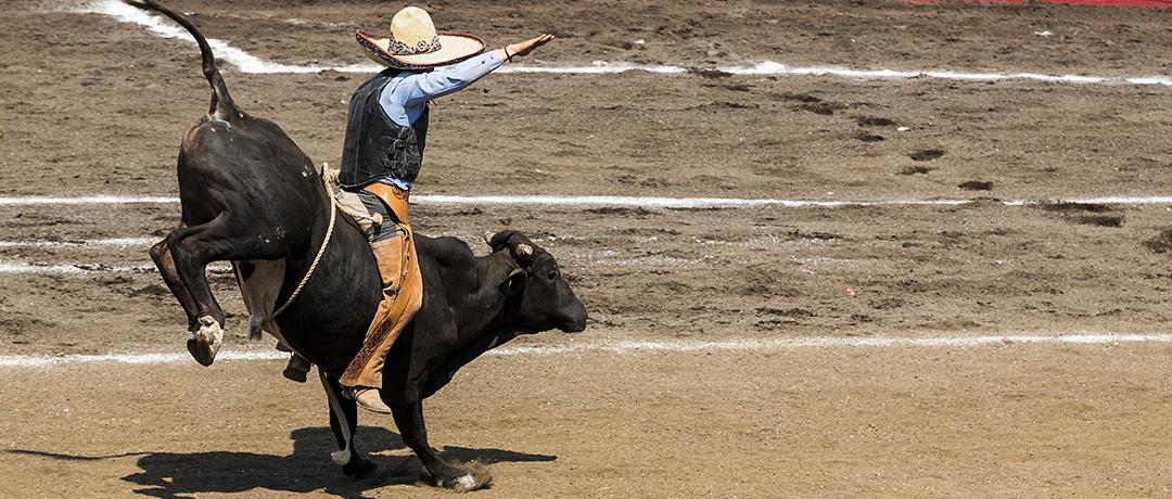 Já faz tempo que muitos jovens brasileiros sonham mais com o título da PBR  (Professional Bull Riders) ... 248936ca3b3