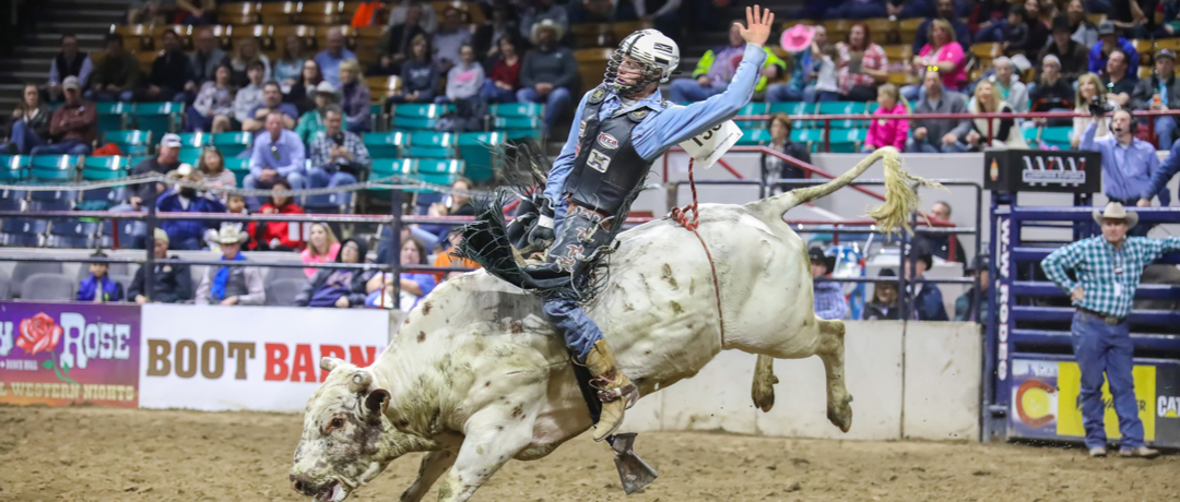 Dia Nacional do Rodeio