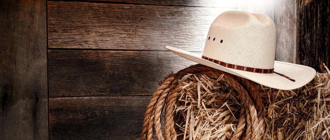 Quais são os tipos de chapéu country   251902e233e