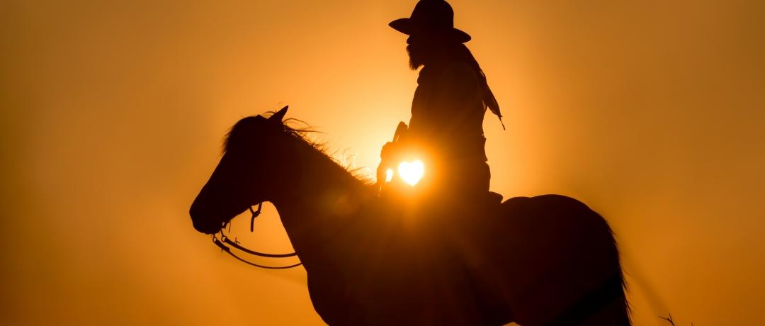 Frases de Cowboy