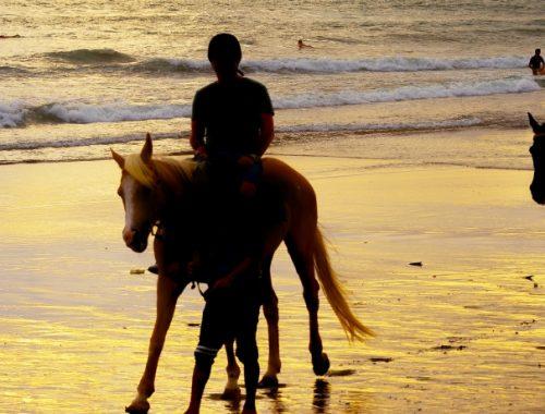 Passeio a cavalo na praia