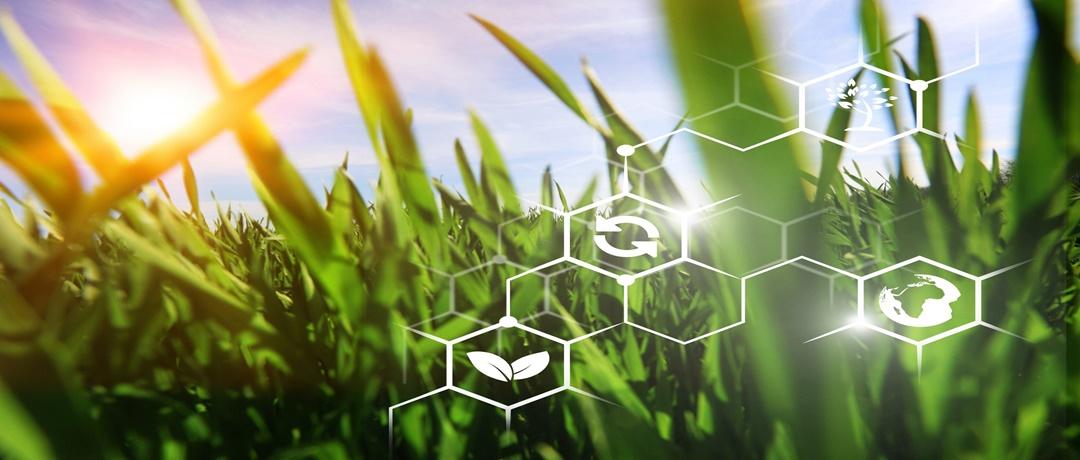 Bioenergia